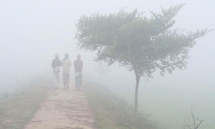 এ মাসে আসছে তিন শৈত্যপ্রবাহ: রাত থেকে বৃষ্টি, চলবে শনিবারও
